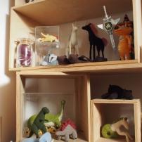 Dino exhibit