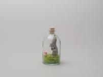 Bunny in a bottle